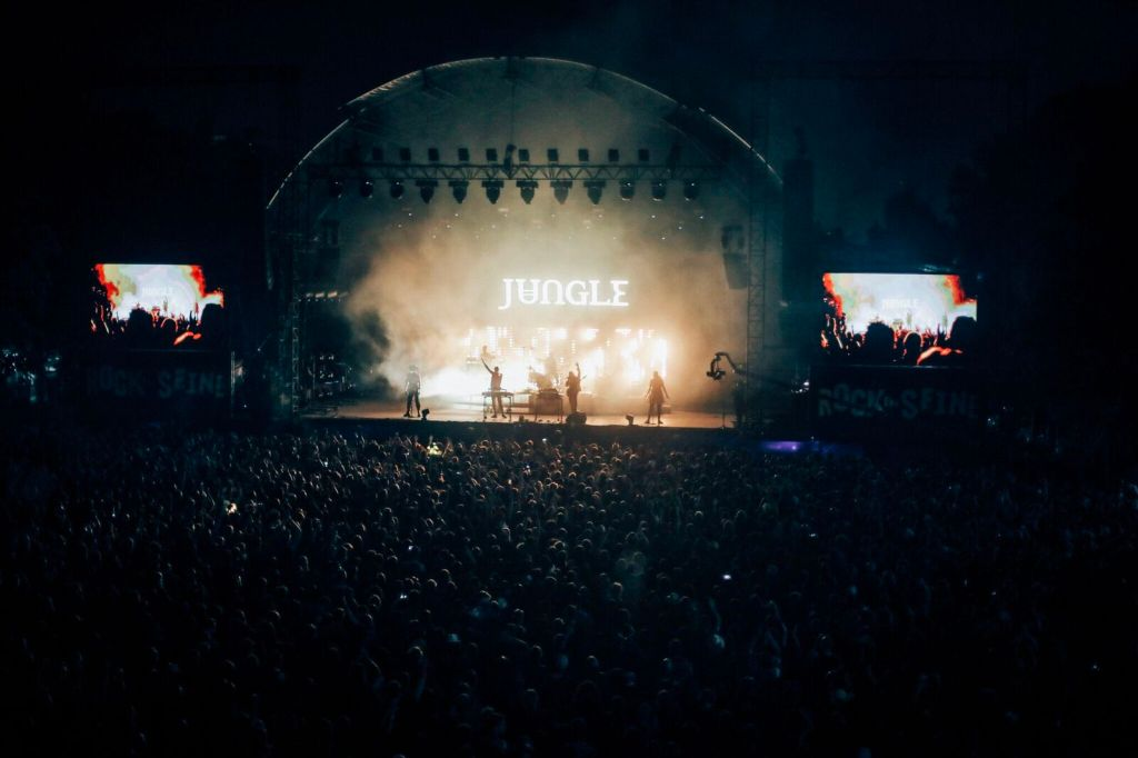 Jungle, Rock en Seine 2019. ©: Mathieu Foucher