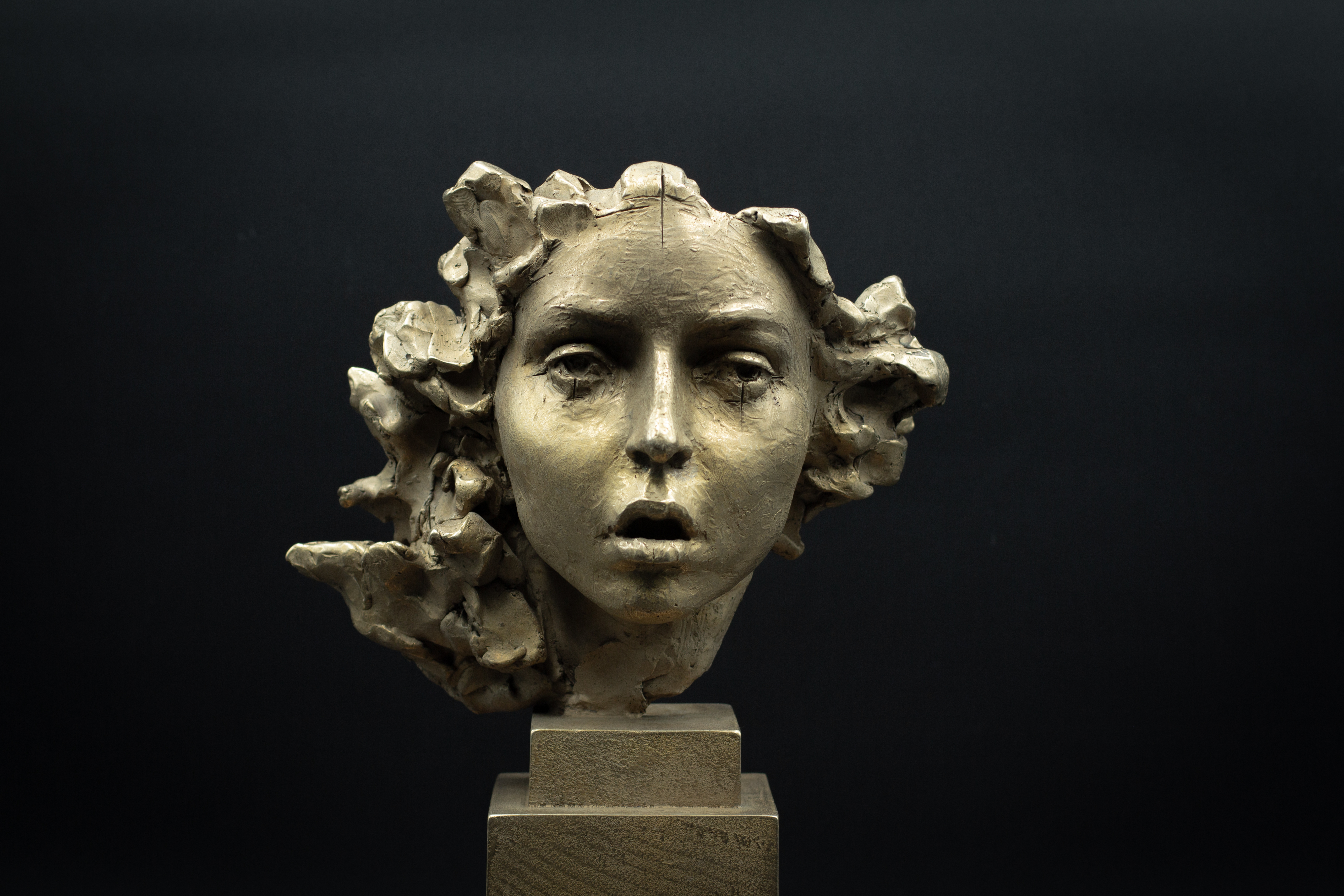 Irina Shark, Medusa, bronze.