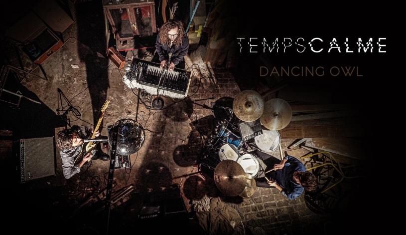 Temps calme - Dancing Owl