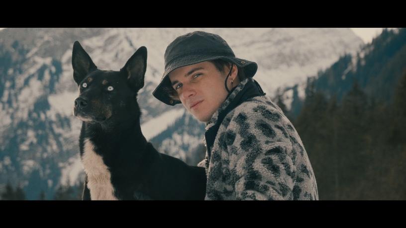 Terrier - L'hiver